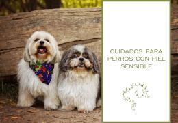 Cuidados para perros con piel sensible